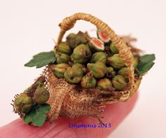 Basket of figs.