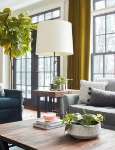 Tips for decorating indoors with plants