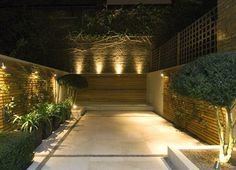 Down and uplighting - a good example of how lighting can make a garden.