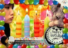 Happy 9th Birthday, Yumi! ♥