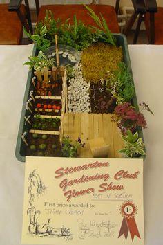 minature tray garden with veggie patch