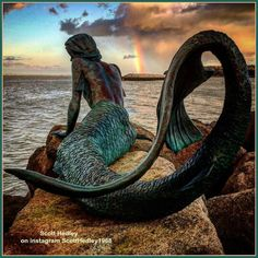 . . .  Mermaids look the way we imagine them there is no proof on how one can look like and this is what I love about pics like these