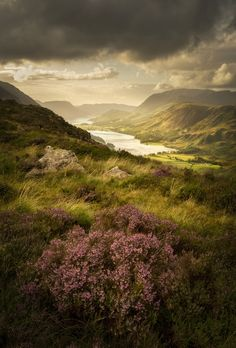 Buttermere Bloom, The Lake District, Cumbria, England by Stuart McGlennon – The Sunday Times Magazine Award. Uk Landscapes, Beautiful Landscapes, Bloom, Monuments, Beautiful World, Beautiful Places, Beautiful Scenery, Beautiful Moments, Beautiful Pictures