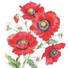 Beautiful red poppies on a  paper napkin for decoupage.  Buy your decoupage supplies at Decoupage Designs USA