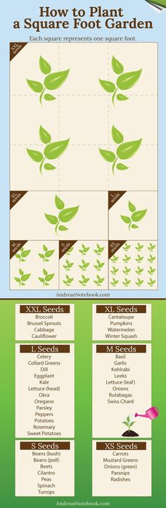 A Simple Guide to Planting a Square Foot Garden: http://homeandgardenamerica.com/square-foot-gardening-guide