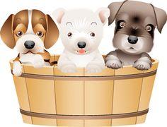 Pet Puppy, Pet Dogs, Dogs And Puppies, Online Pet Supplies, Dog Supplies, Pet Shop, Dog Crossbreeds, Kitten Cartoon, Puppy Images