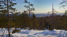 Spring is the best time to enjoy snowy activities in the wild north of Scandinavia Lapland