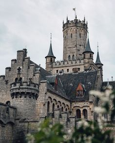 Where the wild things roam — bokehm0n Lower Saxony, Barcelona Cathedral, Tower Bridge, Castles, Gothic, Germany, Wild Things, Travel, World
