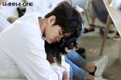 Wanna One 옹성우 (Ong Seongwoo) Ong Seongwoo, Jinyoung, Fandom, Produce 101 Season 2, One Drop, Kim Jaehwan, Ha Sungwoon, Kpop, Tsundere