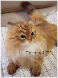"""Here is another amazing piece from a Japanese artist """"merino117"""", this cat is so lifelike!"""