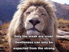 THE WEAK AND THE STRONG