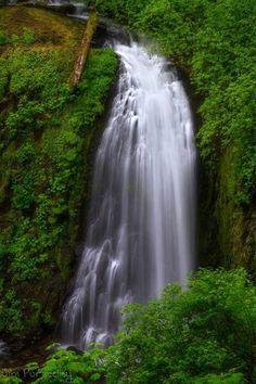 Mc Cord Creek Falls. 2.2 mi hike near Columbua Gorge