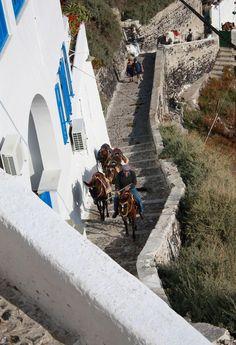 Astonishing views from Greece My Heritage, Donkeys, Island Life, Beautiful Islands, Greece, Addiction, Sidewalk, Wanderlust, Country