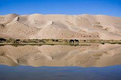 Travel Photography Mongolia, Gobi Desert, Sand Dunes