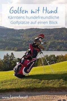 Kärnten bietet sich an für eine Aktivurlaub mit Hund. Hier kannst du deinen Hund auf den Golfplatz mitnehmen, denn Golfen zusammen mit deinem geliebten Vierbeiner macht doppelt so viel Spaß! Nach dem Sport ist vor der Erholung. Die Kärntner Seen bieten die ideale Abkühlung nach einer Golfrunde, für dich und deinen Hund.  Deinem Golfurlaub steht nichts mehr im Weg! #golf #golfplatz #golfurlaub #urlaubmithund #sport #österreichurlaub #kärntenurlaub #kärnten #aktivitätmithund Seen, Freundlich, Golf Bags, Sports, Recovery, Destinations, Pet Dogs, Hs Sports, Sport