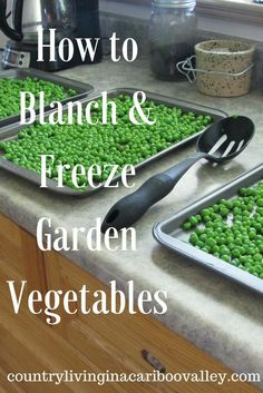 How to Blanch & Freeze Garden Vegetables. Easy & fast. Enjoy the great taste all winter long! Preserving Basil, Garlic Farm, Vegetable Storage, Laying Hens, Farm Store, Veggie Patch, Weed Killer, Family Garden, Herb Garden
