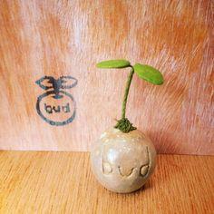 [SOLD OUT]ご注文ありがとうございました!粘土でつくった鉢植えです。 水あげ不要です。 いろんな場所に飾ってください。budのロゴ入りです。●素材 石...|ハンドメイド、手作り、手仕事品の通販・販売・購入ならCreema。
