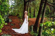Love the deep, dark woods feel here and how the bride stands out! Kristin+and+Davis+-+Grand+Tappattoo+Resort,+Parry+Sound+by+Bayshore+Photography+ - Love the deep dark woods feeling for this striking bride. Portrait Photography, Wedding Photography, Woods, Deep, Bride, Wedding Dresses, Fashion, Wedding Bride, Bride Dresses