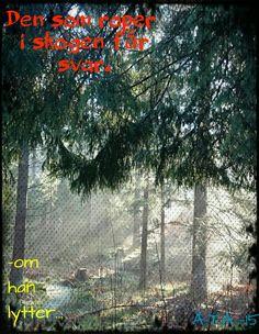 Skogen taler ;-)