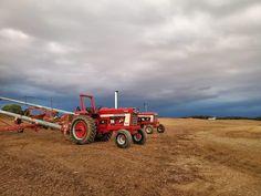 International Harvester, Ih, Farm Life, Tractors