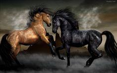 3D Fantasy Art Horses | Walppaper de Caballos