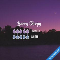 Berry Sleep DIffuser Blend