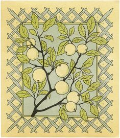 Antique Fruit Branch Stock Image