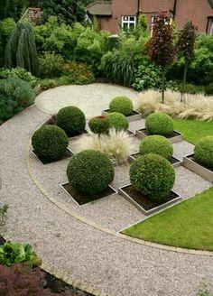 Great textural contrast between gravel box balls & grasses in this garden