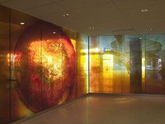 Linda Beaumont creates public and private artworks within the Pacific Northwest. Window Glass Design, Seattle, Window Graphics, Custom Glass, Window Film, Hotel Lobby, Glass Panels, Art Studios, Windows
