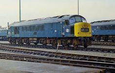 British Rail class 45 locomotive at Leeds Locomotive Engine, Electric Locomotive, Diesel Locomotive, E Electric, Electric Train, Station To Station, Train Truck, Train Pictures, British Rail