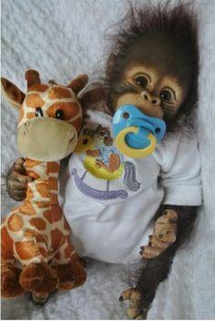 "orangutan reborned for ebay by artist ;           "" Baby jogranny1955"""