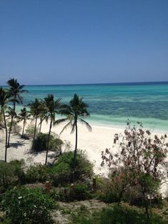 25 best kichanga lodge view images in 2018 luxury beach resorts rh pinterest com