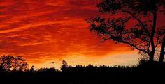 Into the Sunset - Stuart Litoff #sunset #landscape