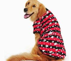 Dog Stuff... Super cute large dog coats like this make me smile so big. Just goes to show you that little dogs don't have ALL the fun. Who can resist a big ol'puppy in a dog sweater?