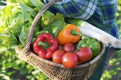 8 Vegetable Recipes to Celebrate National Eat Your Veggies Day http://www.rodalenews.com/how-serve-vegetables