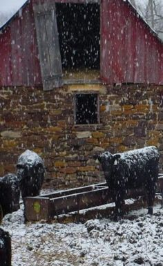 Wonderful Old Barn in Winter