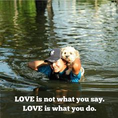 #Love is not what you say. Love is what you do. #Bedshe #Animal