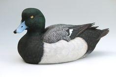 Tupelo handcarved male Greater Scaup Yves Laurent, circa 2012