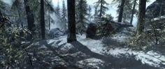 Skyrim - Skyrim's snowy winter forest