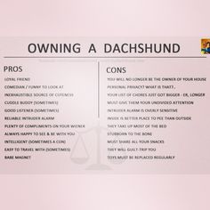 A funny little Pros and Cons list of owning a Dachshund by Crusoe the Celebrity Dachshund #dachshund #doxie #sausagedog #weinerdog #crusoe #prosandcons