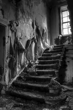 Formerly a grand staircase now lying stripped of its metal by thieves with the walls shedding their paint.