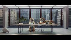 """Instant pub : la """"bonne idée"""" de Virgin Atlantic  Pour Virgin Atlantic, Rogue Films a produit un spot à mille lieux des clichés pour la promotion des compagnies aériennes : adieu luxe, calme, volupté, mannequins dormant paisiblement sur un fauteuil business class doux comme un nuage... Sam Brown met en scène un film rock n' roll, pour cibler une clientèle toujours premium mais encore plus dynamique et conquérante.  http://www.artofteasing.fr/article/20150109-pub-v"""