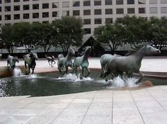 """Breathtaking realistic bronze sculpture done by Robert Glen. It is at Williams Square in Los Lolinas in Irving, Texas. This was dedicated on September 25th, 1984 and is called """"The Mustangs of Las Colinas""""."""