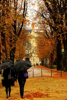 Paris in fall.