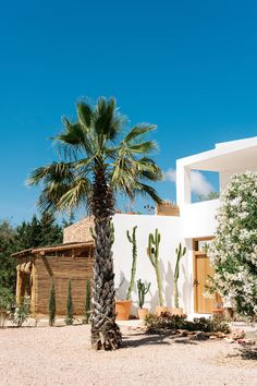 Our edit of the best hotels on Ibiza and Formentera, including the latest revamped places to stay including Atzaro Ibiza and Nobu Ibiza Bay Best Hotels In Ibiza, Ibiza Hotel, Beautiful Hotels, Beautiful World, Beautiful Places, Vacation Places, Places To Travel, Places To Visit, Ibiza Travel