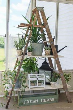 DIY with old ladder