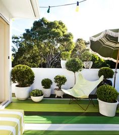 Lean and green: Sydney terrace.. The rooftop deck is painted in Brendan's trademark 'barcode' stripes, using Dulux greens. Concrete pots, a mix of new and secondhand, are filled with Japanese box