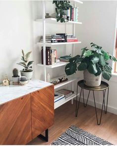 Favorite things in no particular order: books, plants and brass accents #hairpintable #brassmister #schoolhouseelectric (via @jade_melissa) / shop our feed - link in profile