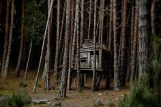 Cabin Porn: Treehouse near the Embalse del Neusa,...