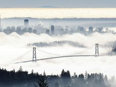 Vancouver Fog - Lions Gate Bridge span out of the fog